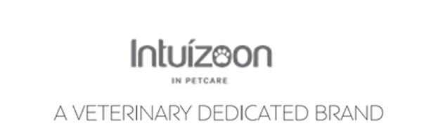 Intuizon_Logo