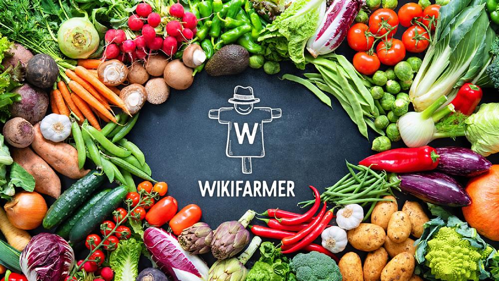 wikifarm201222